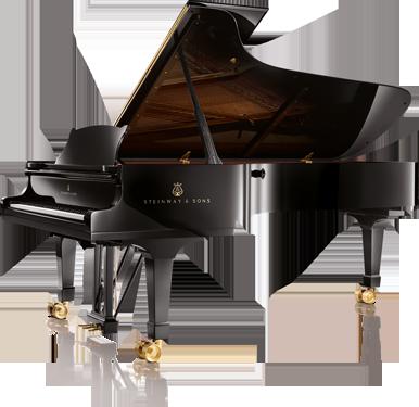 location de pianos de concert bietry musique. Black Bedroom Furniture Sets. Home Design Ideas